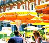 Cursos de verano alemán e inglés